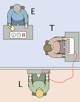 The experimenter (E) orders the teacher (T), the subject of the experiment, to give what the latter believes are painful electric shocks to a learner (L), who is actually an actor and confederate. The subject believes that for each wrong answer, the learner was receiving actual electric shocks, though in reality there were no such punishments. Being separated from the subject, the confederate set up a tape recorder integrated with the electro-shock generator, which played pre-recorded sounds for each shock level etc.[170]