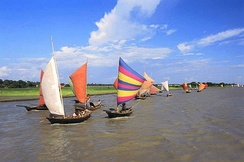 Boats with sails in Bangladesh