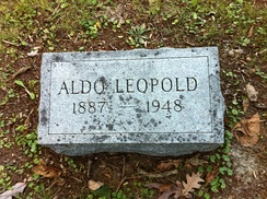 Leopold's headstone at his family plot in Aspen Grove Cemetery in Burlington, Iowa