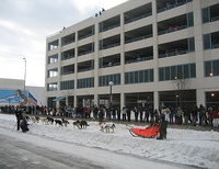 The ceremonial start of the Iditarod Trail Sled Dog Race, arguably the state's most iconic event, in downtown Anchorage, Alaska.