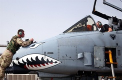 U.S. Air Force crewmen perform maintenance on an A-10's nose in the Persian Gulf region in 2003