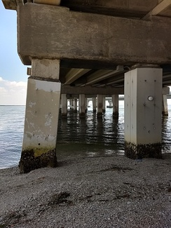 'Pile jackets' encasing old concrete piles in a saltwater environment to prevent corrosion and consequential weakening of the piles when cracks allow saltwater to contact the internal steel reinforcement rods