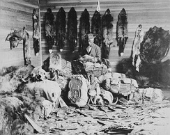 A fur trader in Fort Chipewyan, Alberta in the 1890s
