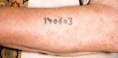 An identification tattoo on a survivor of the Auschwitz concentration camp
