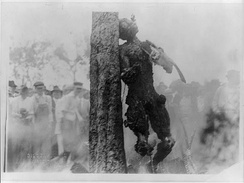 Du Bois included photographs of the lynching of Jesse Washington in the June 1916 issue of The Crisis.[118]