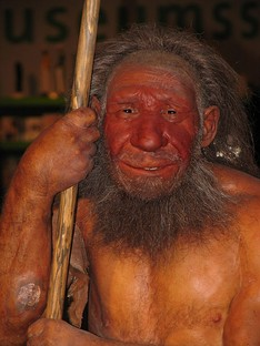 Dermoplastic reconstruction of a Neanderthal