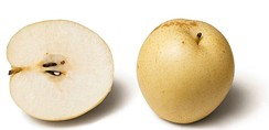 "Many varieties, such as the Nashi pear, are not ""pear-shaped"""