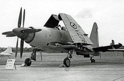 Wyvern S.4 strike aircraft of 813 Naval Air Squadron at RNAS Stretton in 1955