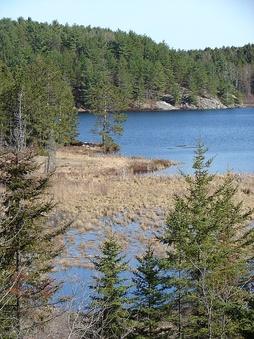 Типичный пейзаж Канадского щита, Онтарио