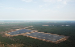 The 71.8 MW Lieberose Photovoltaic Park in Germany.