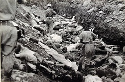South Korean soldiers walk among the bodies of political prisoners executed near Daejon, July 1950