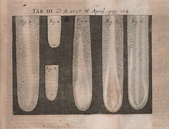 Illustration from The posthumous works of Robert Hooke... published in Acta Eruditorum, 1707