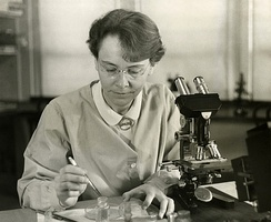 Barbara McClintock (1902–1992) was a pioneering cytogeneticist who used maize (or corn) to study the mechanism of inheritance of traits.