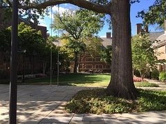 Jonathan Edwards College courtyard