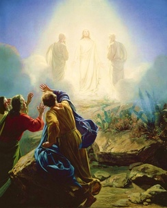 Elijah appeared at the Transfiguration of Jesus.