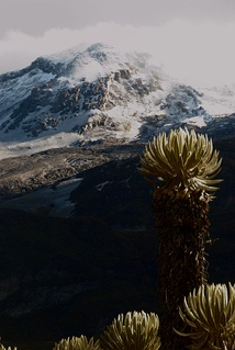Mountain climate is one of the unique features of the Andes and other high altitude reliefs