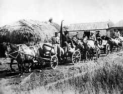 "A ""Red Train"" of carts from the ""Wave of Proletarian Revolution"" collective farm in the village of Oleksiyivka, Kharkiv oblast in 1932. ""Red Trains"" took the first harvest of the season's crop to the government depots. During the Holodomor, these brigades were part of the Soviet Government's policy of taking away food from the peasants."