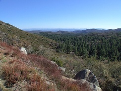 Cleveland National Forest