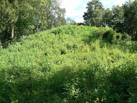 Mound 2 at Lake Jackson Mounds Archaeological State Park
