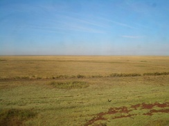 In the steppes of Central Asia (Akmola Region)