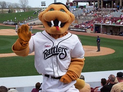 Fang, mascot of the Wisconsin Timber Rattlers