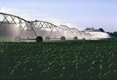 Overhead irrigation, center pivot design