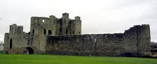 Trim Castle (1169-) is a major construction of this period