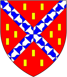 Arms of the Champernon/Champernowne family: Gules, a saltire vair between twelve billets or.