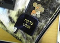 Tzedakah pouch and coins on fur-like padding