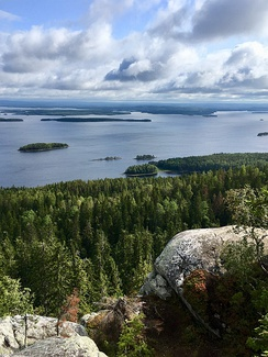 A landscapes of the Koli National Park in North Karelia, Finland has inspired many painters and composers, e.g. Jean Sibelius, Juhani Aho and Eero Järnefelt.[10]