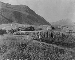 Salmon drying. Alutiiq village, Old Harbor, Kodiak Island. Photographed by N. B. Miller, 1889