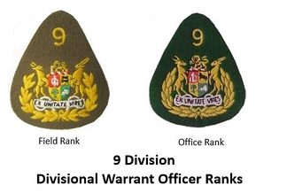 SADF 9 Division Warrant Officer Insignia