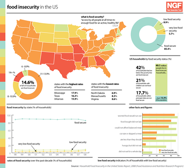 Infographic about food insecurity in the US