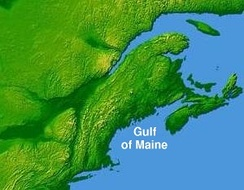 A number of states and provinces along the North American coast drain into the Gulf of Maine. Much of that region is depicted here.