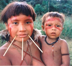 The ancestors of Native Americans, such as this Yanomami woman, crossed into the Americas from Northeast Asia, and genetic and linguistic evidence links them to North Asian populations, particularly those of East Siberia.[163]