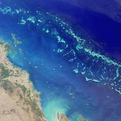 The Great Barrier Reef in Australia is the largest barrier reef in the world