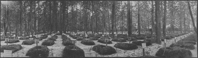 The Moscow City Fraternity Cemetery in Russia, 1915