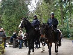 Mounted officers of the Vancouver Police Department in Stanley Park.