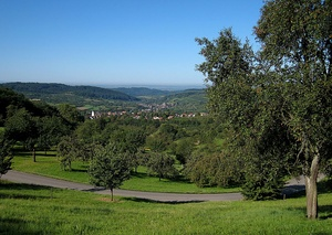 landscape of open countryside, with deep forests in the mid-ground and mountains on the horizon