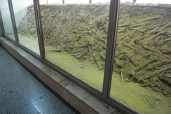 A mass grave from the Nanjing Massacre