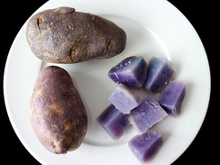 Two dark-skinned potatoes on a white plate. A further potato is cut into sections to show the variety's purple-blue flesh, placed at lower-right on the plate.
