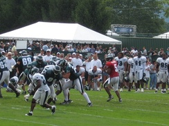 McNabb drops back to pass during Eagles' training camp in Bethlehem, Pennsylvania in August 2008