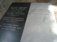 Tombs of John Herschel, left black marble, and Charles Darwin. white marble in Westminster Abbey