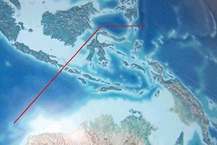 Wallace's hypothetical line divide Indonesian Archipelago into 2 types of fauna, Australasian and Southeast Asian fauna. The deep water of the Lombok Strait between the islands of Bali and Lombok formed a water barrier even when lower sea levels linked the now-separated islands and landmasses on either side.