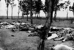 The Armenian Genocide was the Ottoman government's systematic extermination of its Armenian subjects. An estimated 1.5 million people were killed.