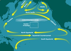 North Pacific Subtropical Convergence Zone − the location of the Great Pacific Garbage Patch
