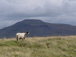 Ingleborough in the Yorkshire Dales – the second highest point in the region