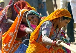 Women in a tug of war, at the annual Pushkar Fair, Rajasthan, India