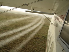 Soviet Antonov An-2 airplane sprays pesticide on wheat crops during Operation Barnstormer (May 2006).