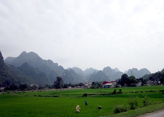Rice field at Chi Lăng Pass